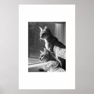 Bengal Cat Stalk Poster