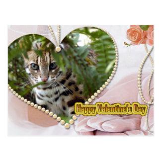 Bengal Cat Valentine Postcard