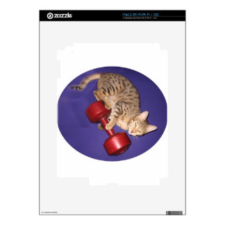 Bengal cat with dumbbell decal for the iPad 2