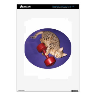 Bengal cat with dumbbell decals for iPad 3