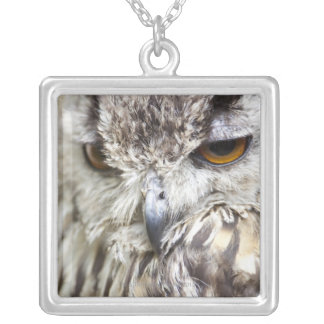 Bengal Eagle Owl Silver Plated Necklace