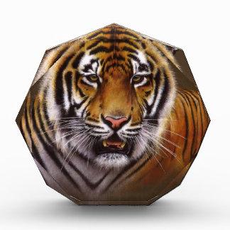 Bengal Face Tiger Acrylic Award