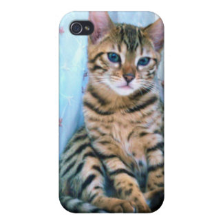 Bengal Kitten iPhone 4/4S Covers
