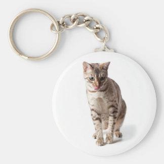 Bengal Kitten licking lips Keychain