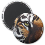 Bengal Tiger 2 Inch Round Magnet