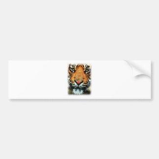 Bengal Tiger Big Cat Bumper Sticker