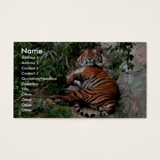 Bengal Tiger Business Card