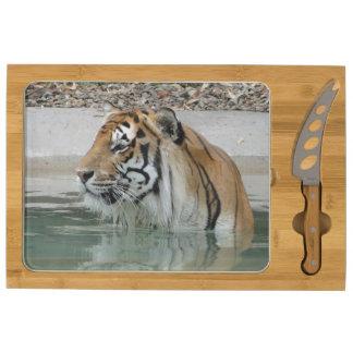 Bengal Tiger Cheese Platter