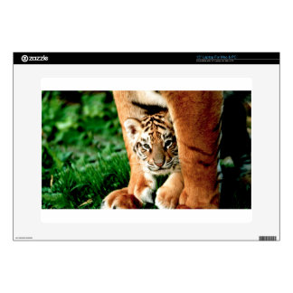 """Bengal Tiger Cub Peers Out 15"""" Laptop Decal"""