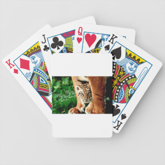 Bengal Tiger Cub Peers Out Bicycle Playing Cards