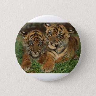 Bengal Tiger Cubs Button