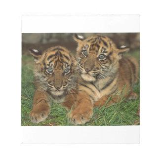 Bengal Tiger Cubs Memo Note Pad