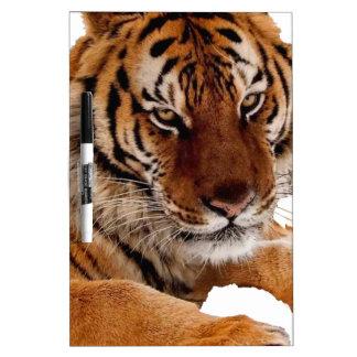 Bengal Tiger Dry-Erase Board