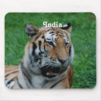 Bengal Tiger in India Mouse Pad