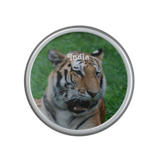 Bengal Tiger in India Speaker