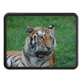 Bengal Tiger in India Trailer Hitch Cover