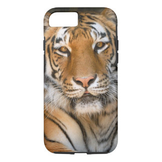 Bengal Tiger iPhone 7 case