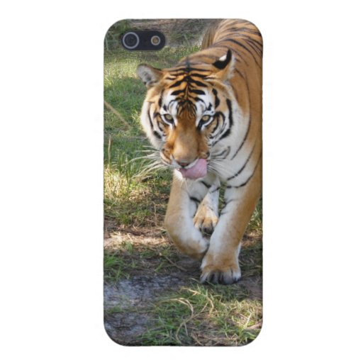 Bengal Tiger iPhone Case Case For iPhone 5