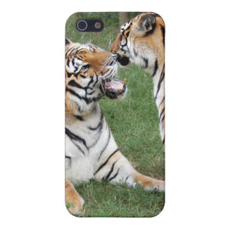 Bengal Tiger iPhone Case iPhone 5/5S Covers