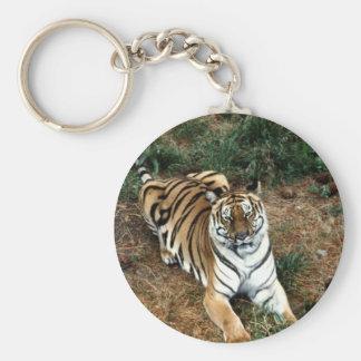 Bengal tiger keychain