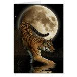 Bengal TIGER & Moon Animal Rights Poem Card