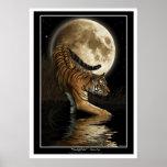 Bengal Tiger & Moon Art Prints & Posters