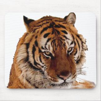 Bengal Tiger Mouse Pad