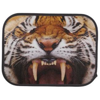 Bengal Tiger, Panthera tigris 2 Car Floor Mat