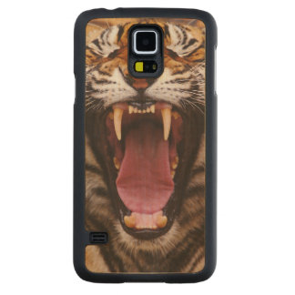 Bengal Tiger, Panthera tigris 2 Carved Maple Galaxy S5 Slim Case
