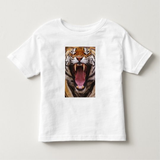 Bengal Tiger, Panthera tigris 2 Toddler T-shirt