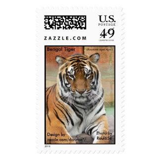 Bengal Tiger  (Panthera tigris tigris) 1 Stamps