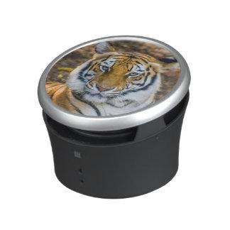 Bengal Tiger (Panthera Tigris Tigris) Bluetooth Speaker