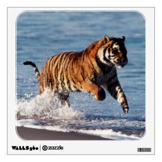 Bengal Tiger (Panthera Tigris) Wall Decal