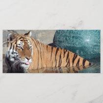 Bengal Tiger Photo Bookmark