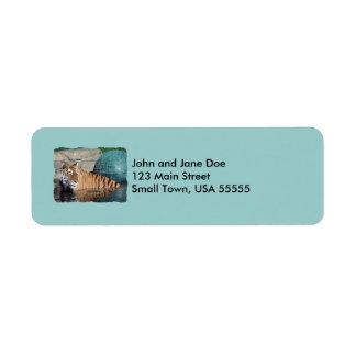 Bengal Tiger Photo Light Blue Address Labels
