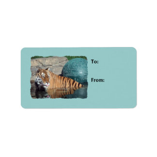 Bengal Tiger Photo Light Blue Gift Tags Label