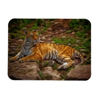 Bengal Tiger Rectangular Magnet