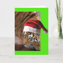 Bengal Tiger Santa Claus Card