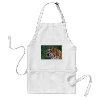 Bengal Tiger showing its fangs Adult Apron