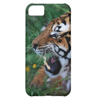 Bengal Tiger showing its fangs iPhone 5C Cover