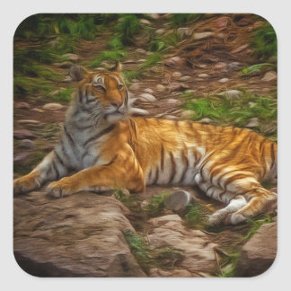 Bengal Tiger Square Sticker