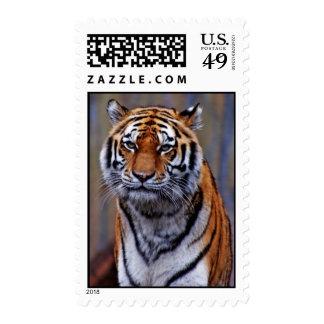 Bengal Tiger Stamp