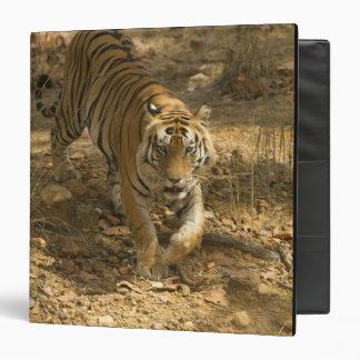 Bengal Tiger walking Binder
