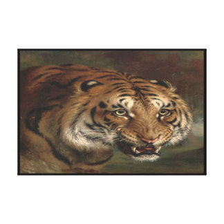 Bengal Tiger watching you Wrapped Canvas Print