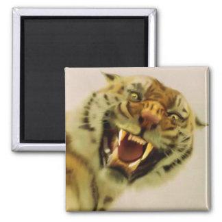 Bengal Tiger Wildlife Big Cat Lover Photo Magnet