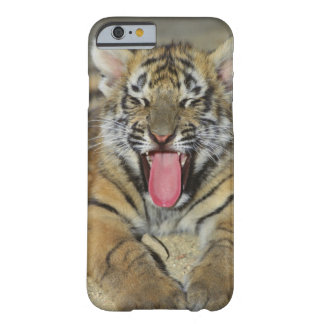 Bengal tiger yawning barely there iPhone 6 case