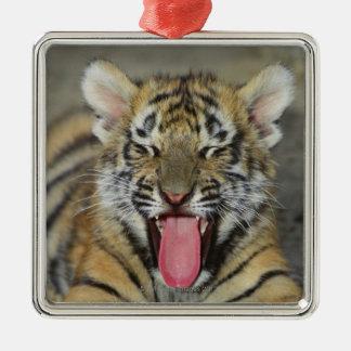 Bengal tiger yawning square metal christmas ornament