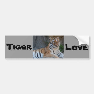 Bengal Tigers Bumper Sticker