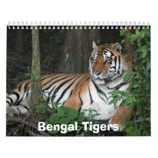Bengal Tigers Calendar, Bengal Tigers Calendar