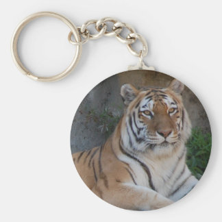 Bengal Tigers Keychain